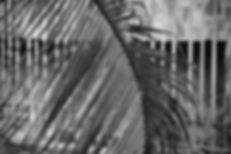 AMS_-_Ändra_hemsidan_Insikter-5.jpg