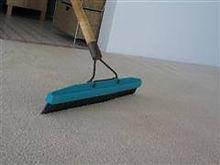 Carpet Brush.jpg