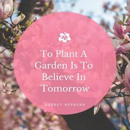 We believe in better tomorrows