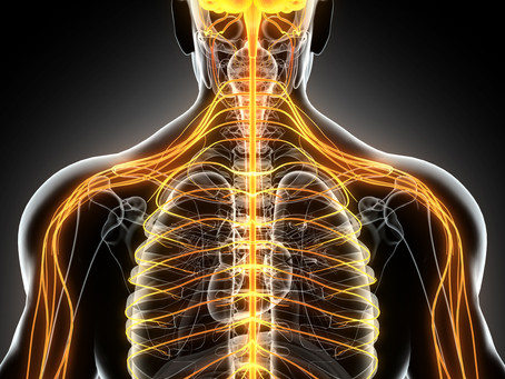 4 Ways A Chiropractor In The Hague Can Improve Your Health
