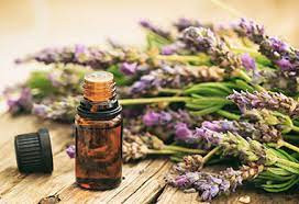 Using Essential Oils To Reduce Toxins from Dr Carey-  Chiropractor in Den Haag