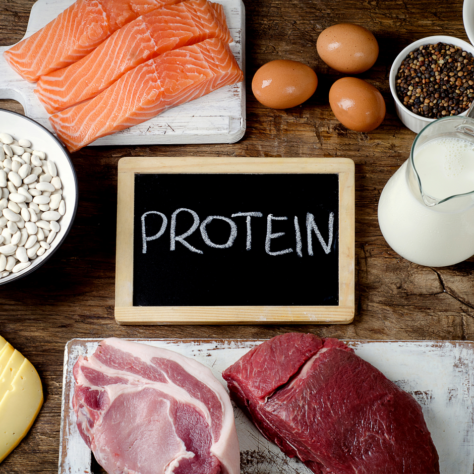 Protein  -What is it and why do we need it?