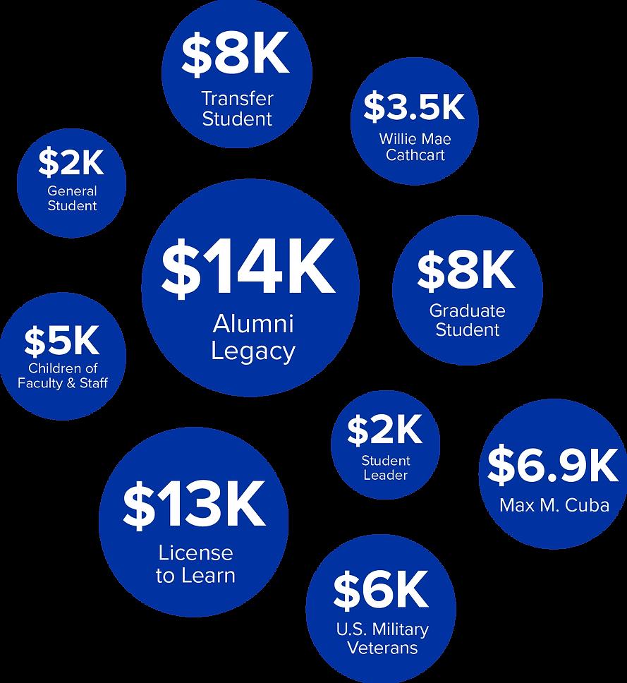 Scholarship stats.png