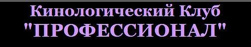 www.reyspride.ru