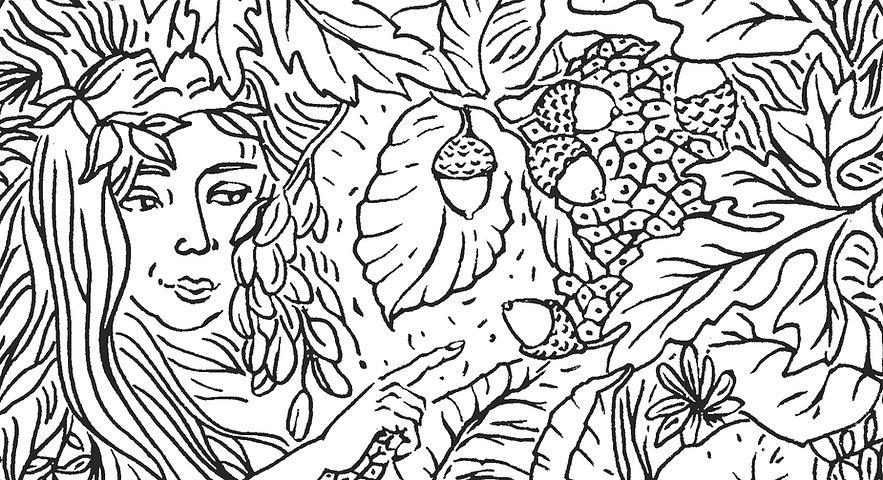 """Zeichnung Silke Weiß """"Im Zauber der Natur"""""""