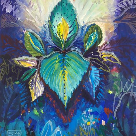 Pflanzen träumen Buntes