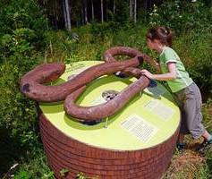Infostation zum Thema Schlangen