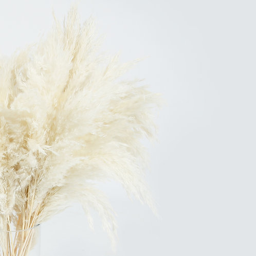 White Naturelle Pampas Grass