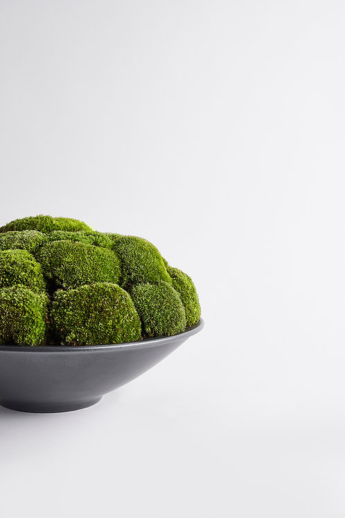 Anthracite Moss Bowl