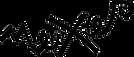 logo_nexes%20de%20calidad_edited.png