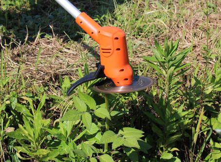 電動の草刈機は切れないの?コードレスだとすぐ止まる?危険な使い方とは?カスタマーイケガキがコードレス草刈機を使ってみた!
