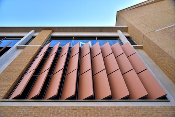 Terracotta Oxford.jpg
