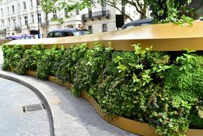 Living Wall - Royal Lancaster.jpg
