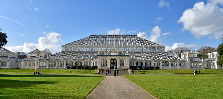 Temp Hse, Kew Gdns 154.jpg