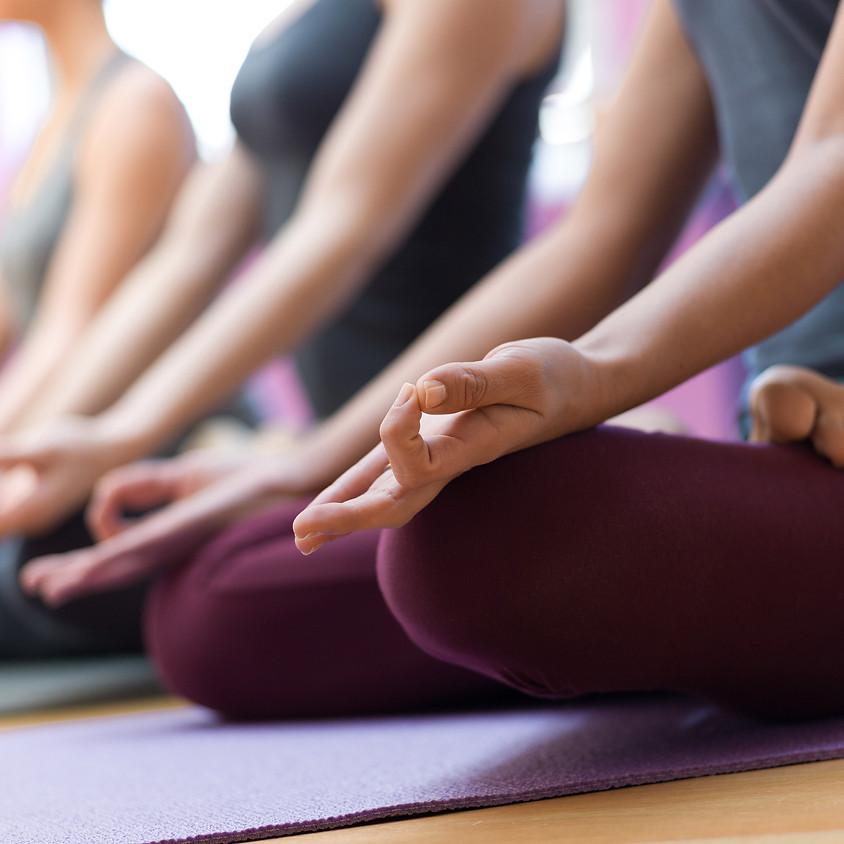 2 Tages Workshop: Yoga & Meditation                            Am: 14. & 15.11.2020