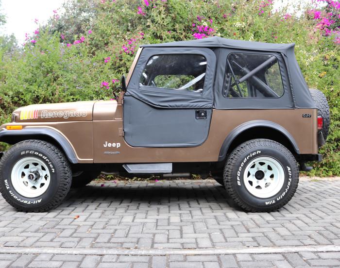Jeep 1983 Renegado