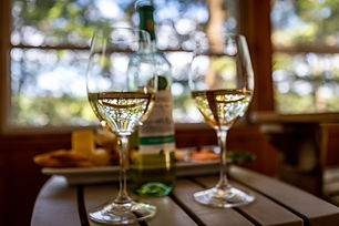 Glasses of wine with trees.jpg