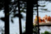 Gathering on the Dock - June 2012MR.JPG
