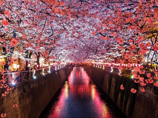 """Coluna """"Turismo"""": Japão"""