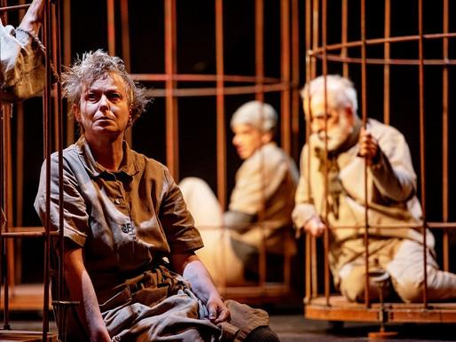"""""""As Aves da Noite"""", drama de Hilda Hilst, ganha palco virtual com direção de Hugo Coelho"""