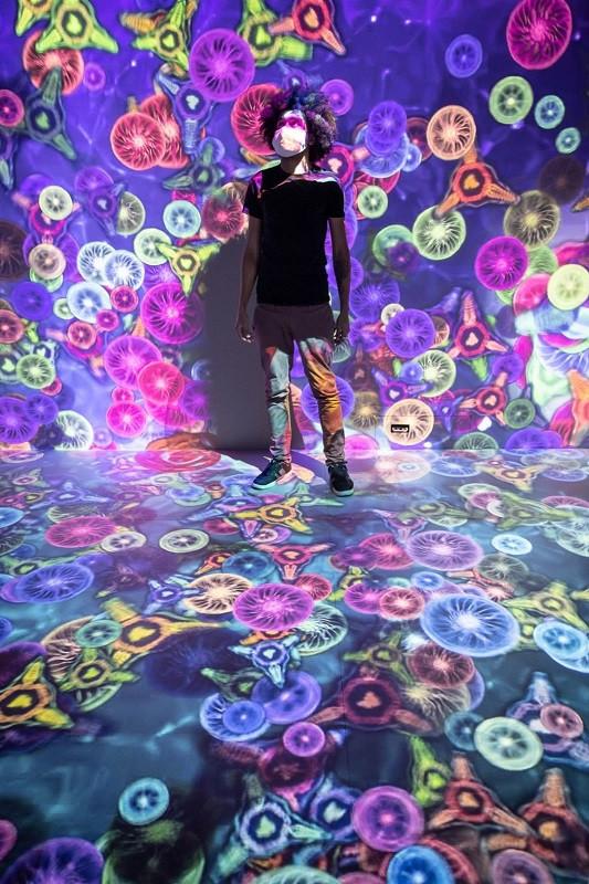 Instalação im.fusion está em cartaz no Museu de Arte Contemporânea, em Niterói
