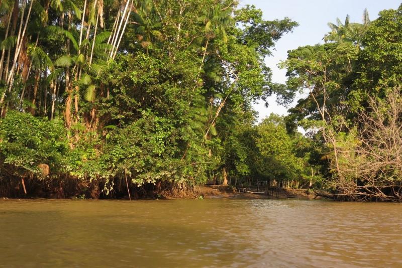 Ilha do Combu, em Belém, no Pará