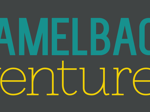 MEET THE 2020 SEMI-FINALISTS FOR THE CAMELBACK FELLOWSHIP (Featuring HomeWorks Co-Founder/Executive)