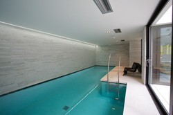 Sacha Jacq Interiors - Modern Indoor Pool