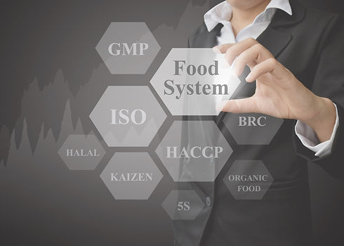 businesswoman showing presentation Food System Industries(ISO, GMP, HACCP) on black backgr...on).jpg