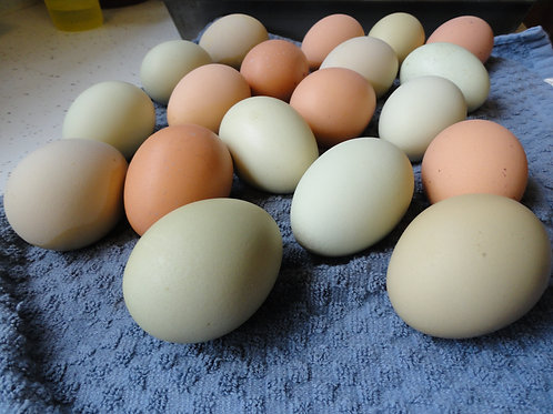 Eggs - Click to order