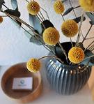 Blume 1.jpg
