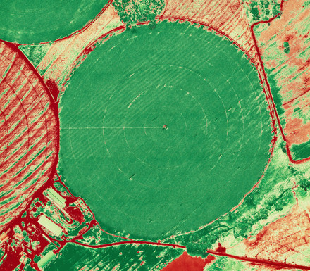 NDVI - NORMALIZED DIFFERENCE VEGETATION INDEX