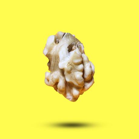 Cerveau de noix