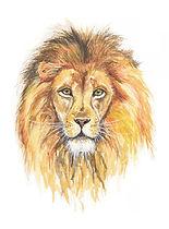 03-14-20 WC Lion.jpg