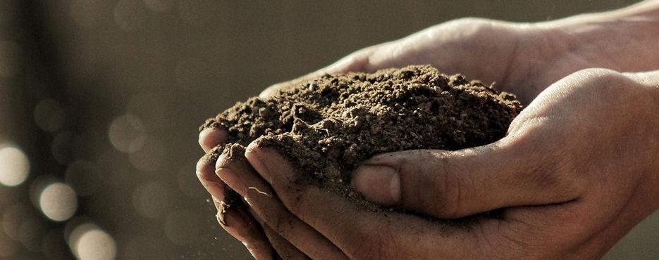 Soil and amendments