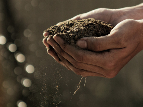 We Can't Welcome Spring Without the Soil