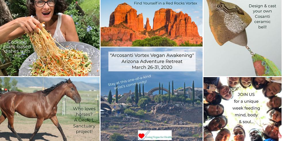 Arcosanti Vortex Vegan Awakening Arizona Adventure Retreat