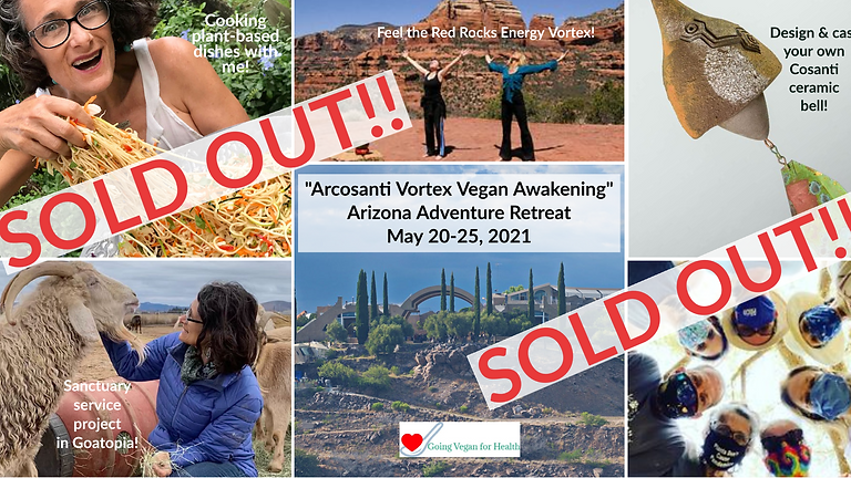 SOLD OUT! Arcosanti Vortex Vegan Awakening Arizona Adventure Retreat