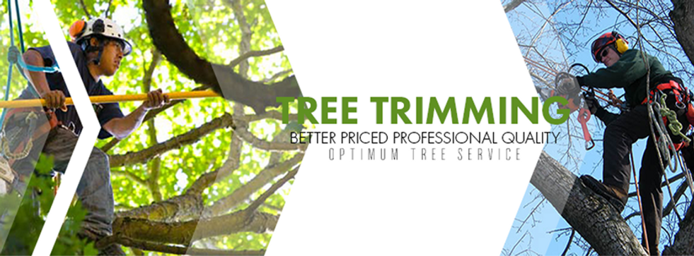 tree trimming banner.png