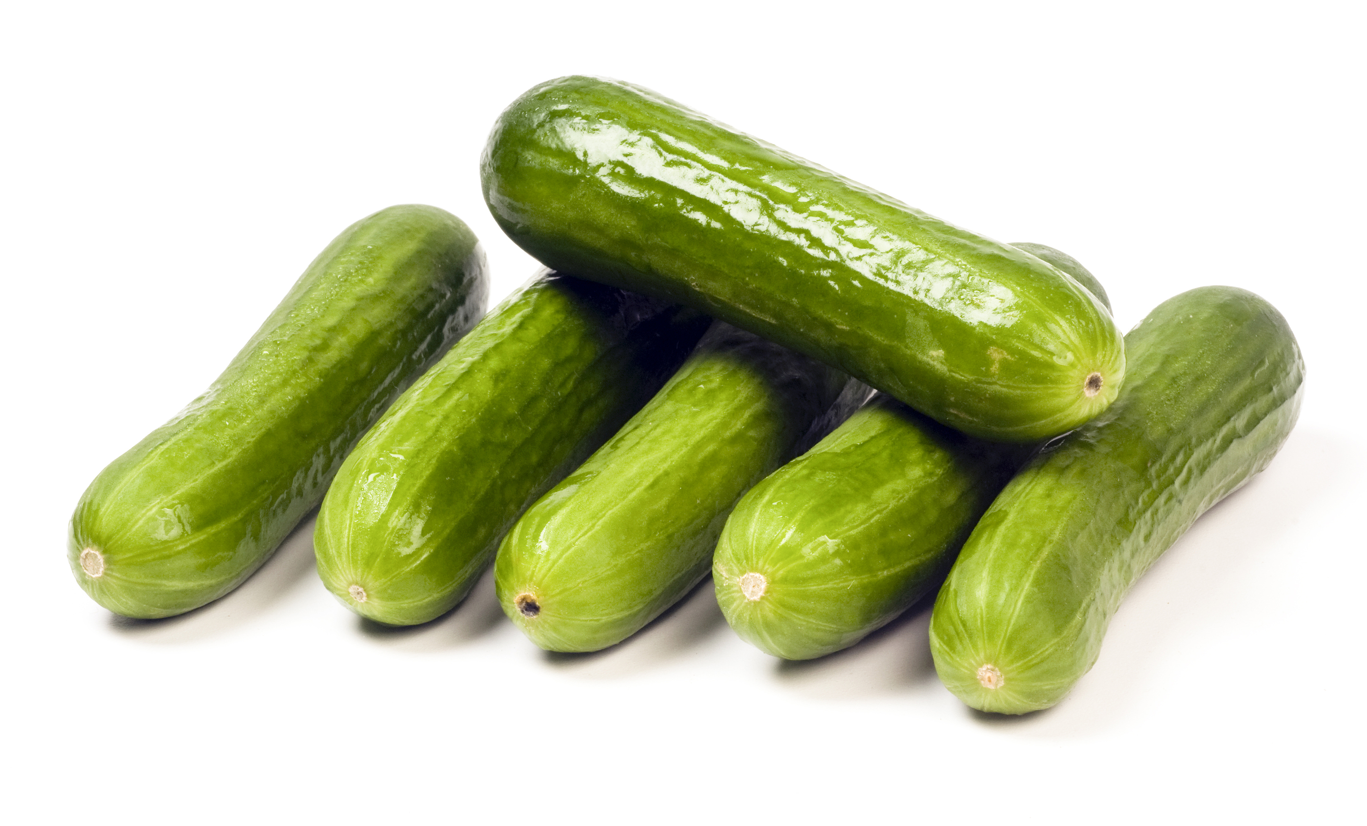 Persian Mini Cucumbers
