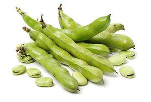 Broad beans on white background.jpg