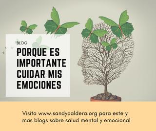 porque es importante la salud emocional