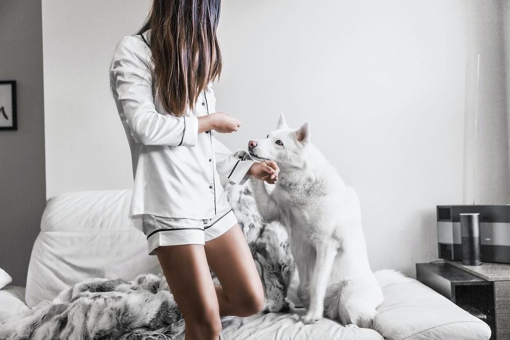 Chica en pijama y perro blanco jugagndo en el sofá