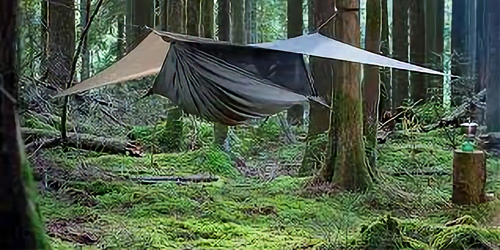 Overnight Woodland Experience