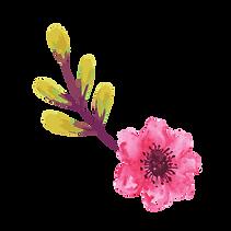 watercolour elements-01.png