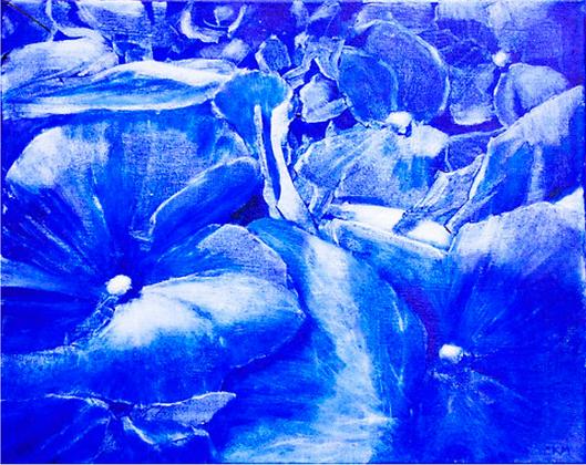 Blue and White- Hydrangeas