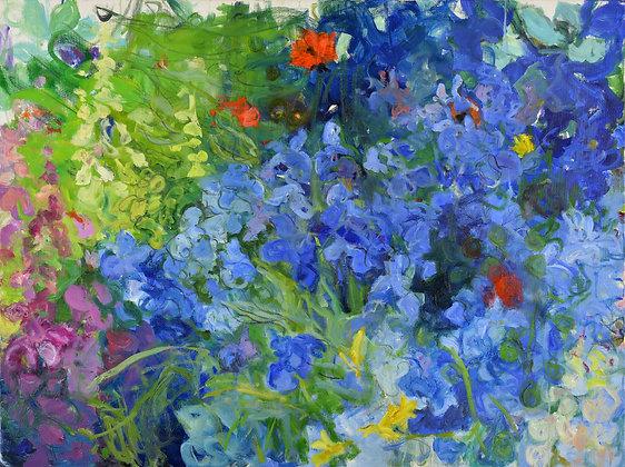Blue Iris Garden, Caramoor