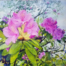 NEW-Treetop Rhododendron, oil over acryl