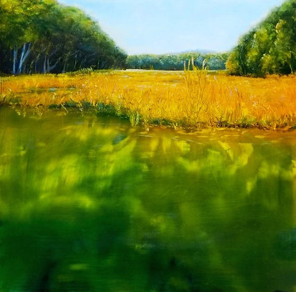 Pond and Field