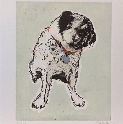Pug I